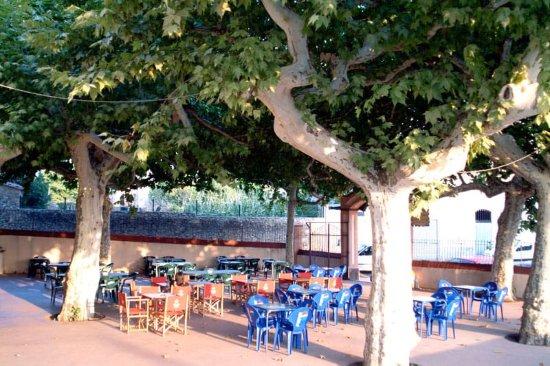 Tortella, Hiszpania: La terraza bajo los árboles es un lugar delicioso