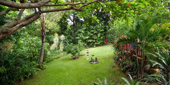 Honu Kai B&B: You will be immersed in a lush tropical surrounding.