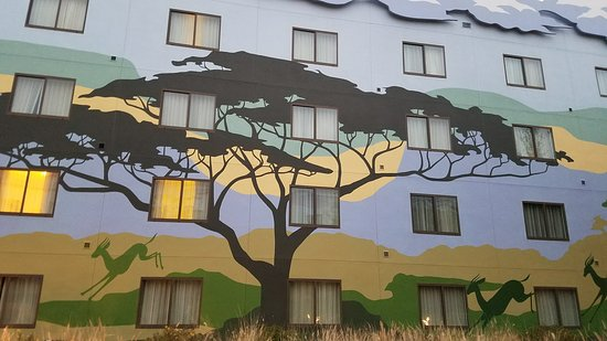 Disney's Art of Animation Resort: Outside of the Lion King-themed rooms which is toward the center of the resort.