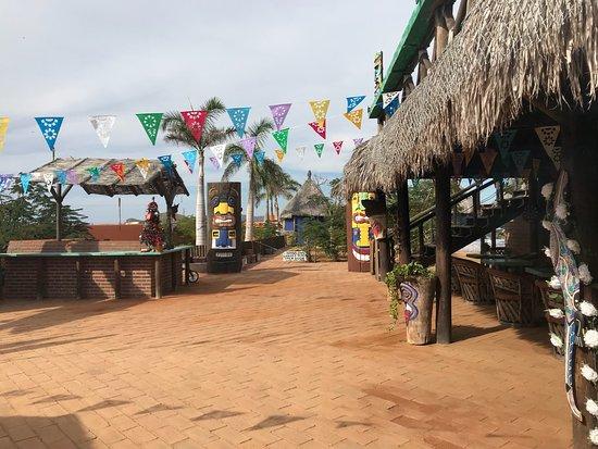 Jungle Pescadero: photo3.jpg