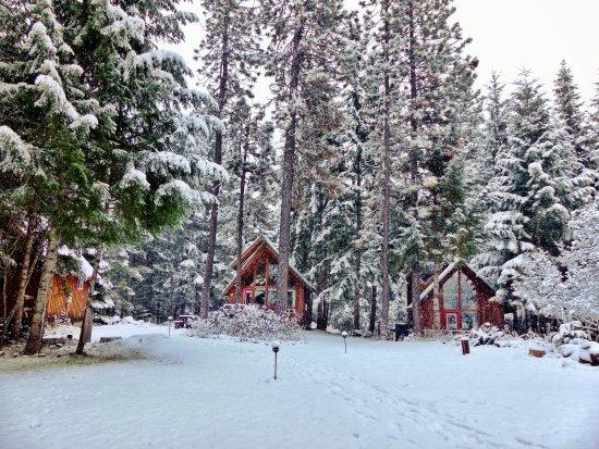 Cabin 2 winter foto trout lake cozy cabins trout for Trout lake cozy cabins