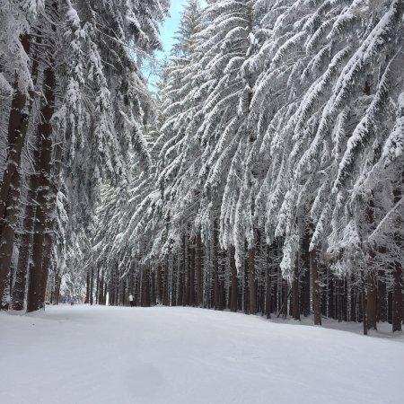 Holiday Valley: photo0.jpg