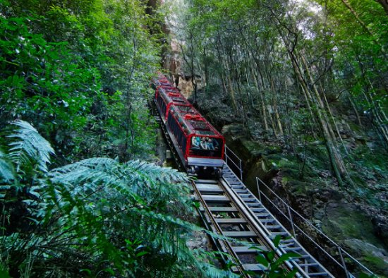 ‪Scenic World Blue Mountains‬
