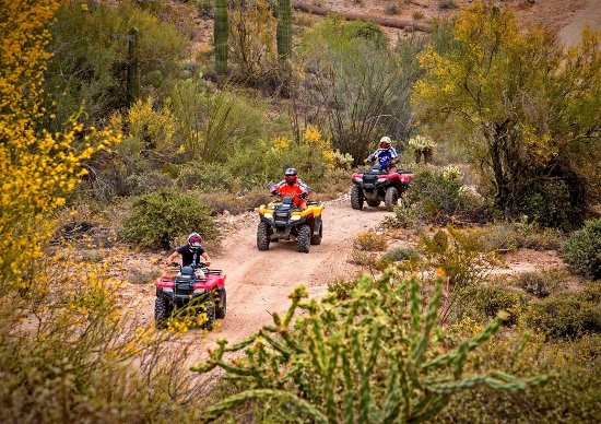 Black Canyon City, AZ: Wind through scenic desert terrain on one of our guided ATV adventures.