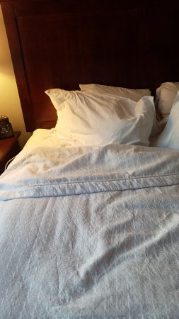 Homewood Suites Tampa Airport - Westshore: Bed untidy upon check in