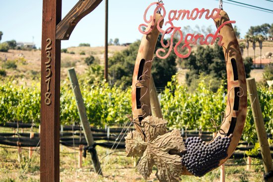 Ramona, CA: The welcoming sign at the front of our winery
