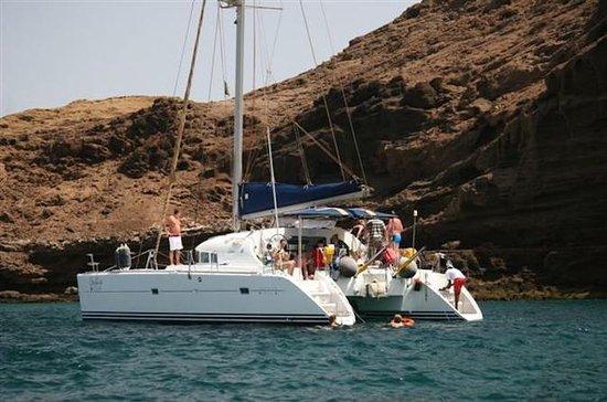 Half-Day Sal Island Catamaran Cruise...