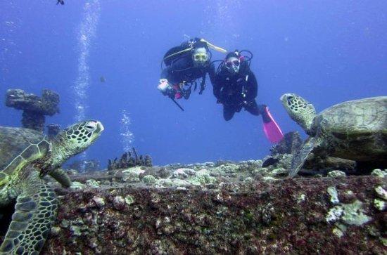Plongée sous-marine du récif peu...