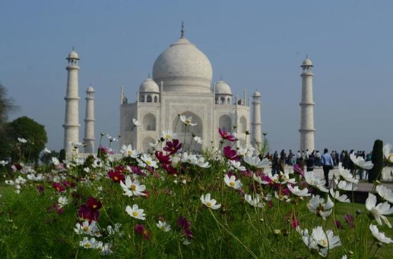 Delhi Agra, Taj Mahal Private Tour by Express Train with Lunch