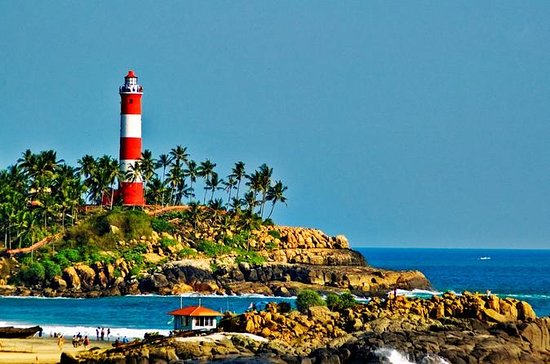Kerala Package for 8 Days with...