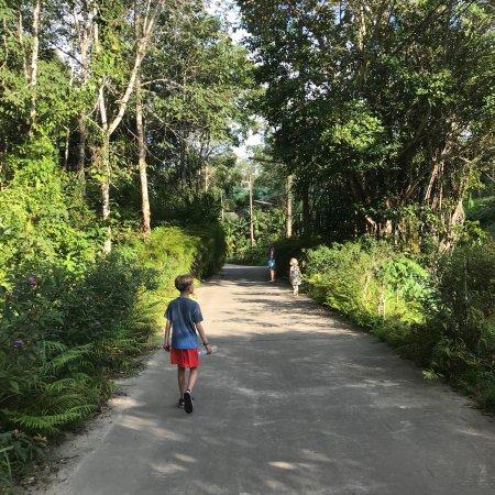 Koh Yao Yai Φωτογραφία