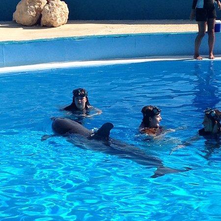 Naxxar, Malte : photo0.jpg