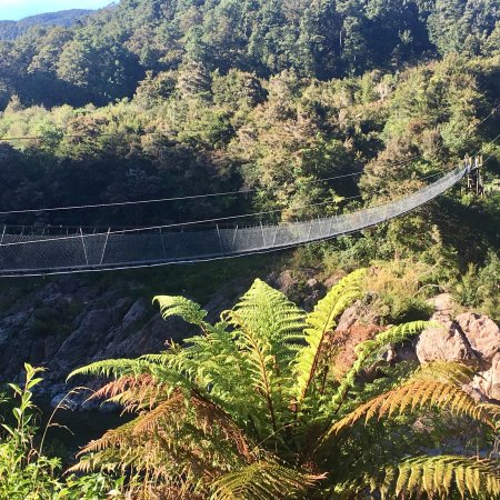 Buller Gorge Swingbridge Ltd: photo1.jpg