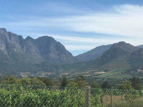 Franschhoek Wine Tram: View from one of the wine farms