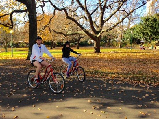 Invermay, Australia: Autumn splendour in Princes Square