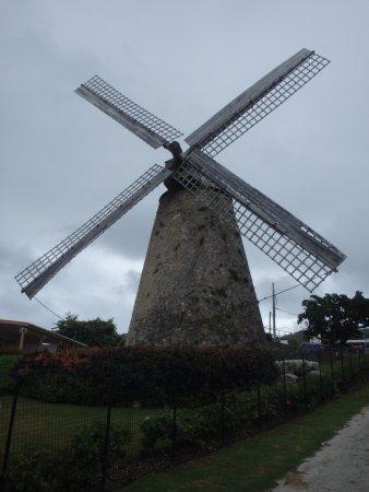 Morgan Lewis Sugar Mill: Sugar Mill