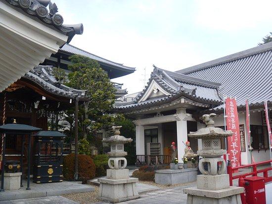 寶塚市照片