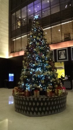 ロビーの中央に大きいクリスマスツリーが飾られていました。他にも廊下にいくつもツリーが飾られていました