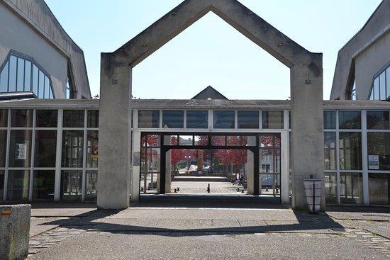 Centre Culturel Rene Cassin