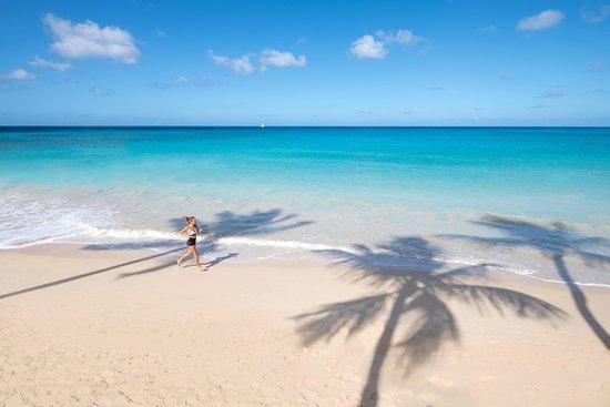 Porters, Barbados: Beach run