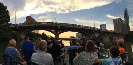 Bats Bridge pano