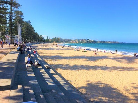 Manly Beach Nsw Australia