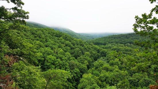 Khadyzhensk, Russia: Урочище Белая гора - летний вид с обрыва