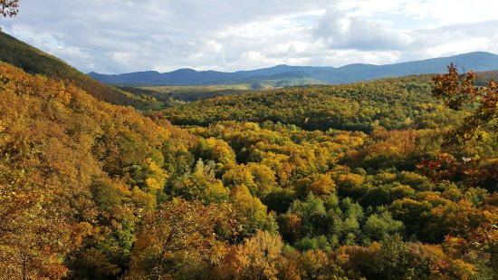 Khadyzhensk, Russia: Урочище Белая гора - осенний вид с обрыва