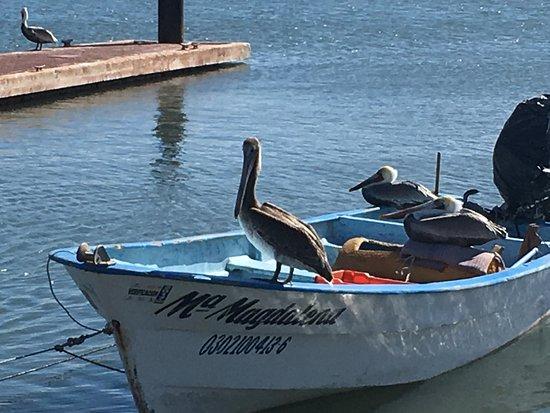 La Mision Loreto: Waterfront