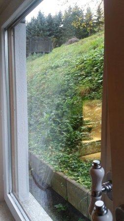 Oberheimbach, Germany: onze helling....