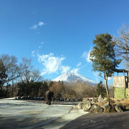 Susono, Japón: photo0.jpg