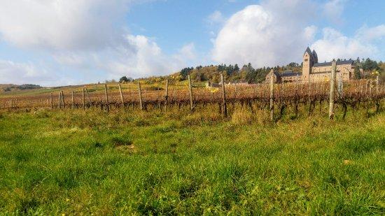 Benedictine Abbey of St. Hildegard: de abdij frontaal zicht met wijngaarden