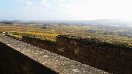Benedictine Abbey of St. Hildegard: uitzicht