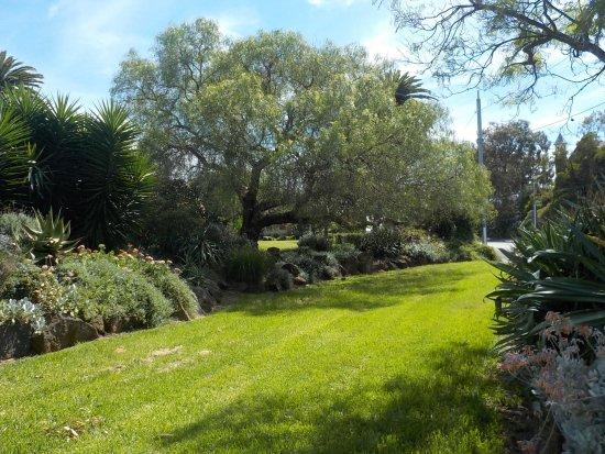 Creswick Street Reserve