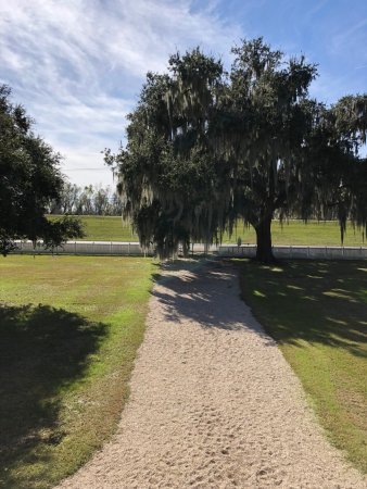 Destrehan Plantation: Facing the Mississippi Rive from the second story patio.