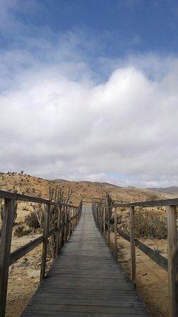 Pan de Azucar National Park: IMG-20171229-WA0024_large.jpg