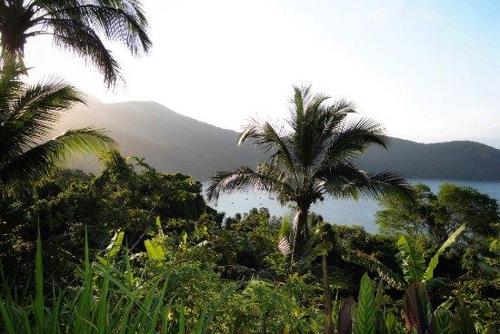 Jungle Lodge : photo0.jpg