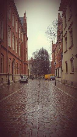 Jagiellonian University - Collegium Maius: Sulla strada per il Collegium Maius