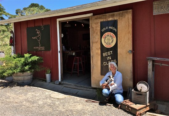 Moondance Cellars Priscilla Cohen And Pup Mike Outside To CLEANED Pig Barn Now The
