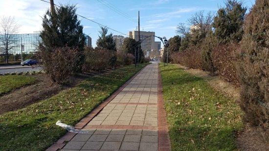 Rockville, MD: walking area