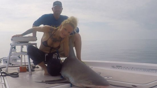 Boca Grande, Φλόριντα: Shark #2 tagged and released.