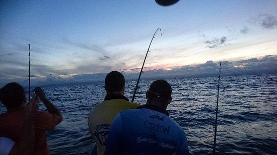 Bk 39 s gold coast fishing charters for Gold coast fishing charters