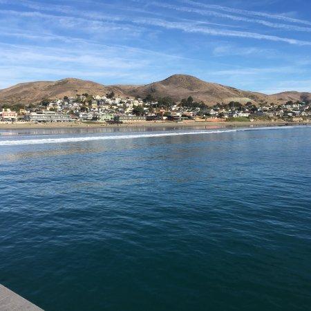 Cayucos, CA: photo2.jpg