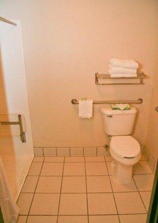 Baymont Inn & Suites Clinton / Valley West Court : Guest room