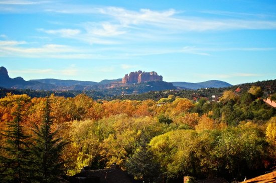 The Orchards Inn of Sedona : Guest room