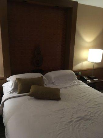 暹羅城市飯店照片