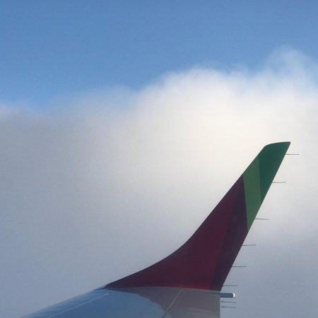 TAP Air Portugal Photo