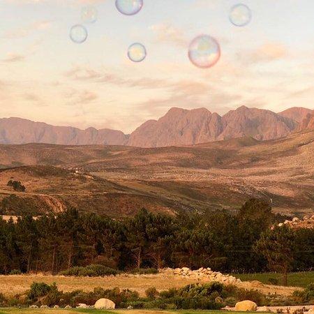 Sir Lowry's Pass, South Africa: photo2.jpg