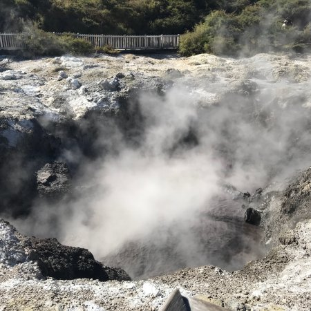 Elite Adventures Rotorua Tours: photo1.jpg