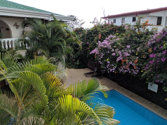 Hotel Buena Vista: IMG_20171229_150127_large.jpg